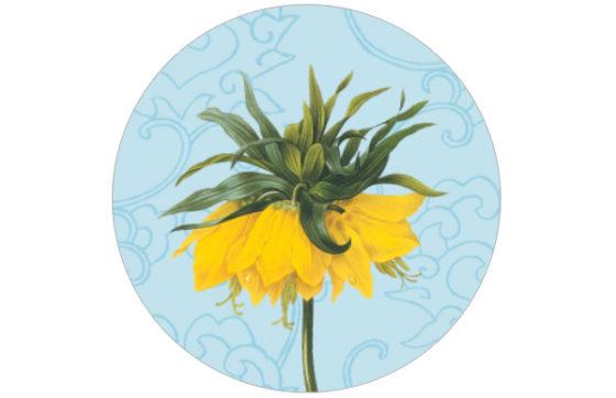 Blühendes China - edle florale Tapete