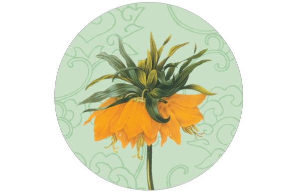 Florale Tapete auf ornamentalem Hintergrund