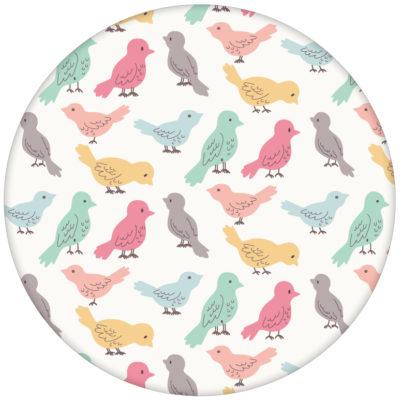 """lustige Vliestapete """"Alle Vöglein"""" mit einem Schwarm bunter Vögel, Wandgestaltung bunt"""