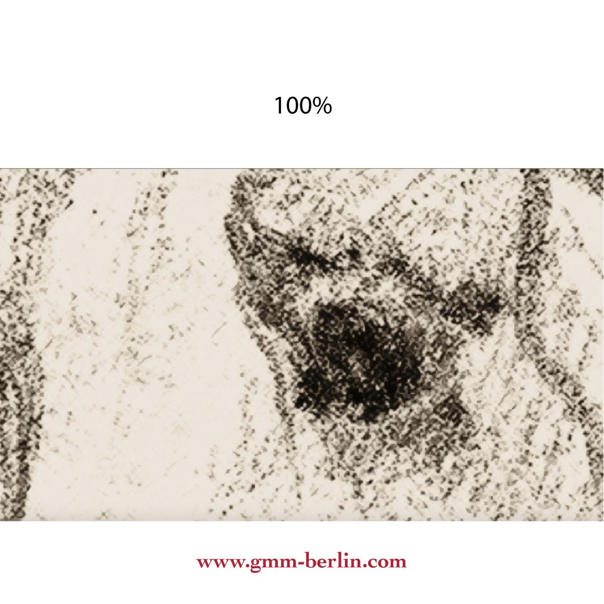 gmm_1b_00145_detail