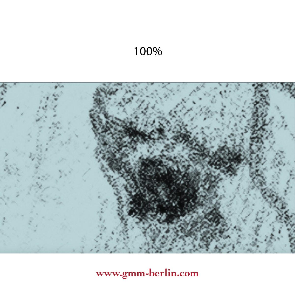 """Hellblaue Kunst Tapete """"Pferde Studien"""" nach Théodore Géricaultaus dem GMM-BERLIN.com Sortiment: beige Tapete zur Raumgestaltung: #00145 #Ambiente #flur #Grafik #interior #interiordesign #Kunst #schlafzimmer #Wohnzimmer für individuelles Interiordesign"""