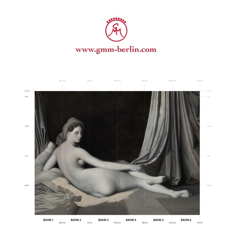 """Große Panorama Tapete: Edle Künstler Tapete """"Odalisque in Grisaille"""" nach Jean Auguste Ingres"""